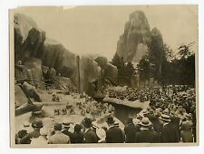PARIS ZOO DE VINCENNES PHOTOGRAPHIE ARGENTIQUE 1920 VINTAGE PHOTOGRAPH NY TIMES