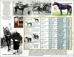 Race Horse Racing BOLD RULER sire of Secretariat Picture Photo Pedigree