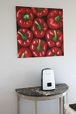 BIG Original oil painting on canvas PEPPERS 20th century signed King 88cm fruit