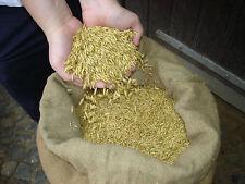 Futterhafer 25 kg Ernte 2020 - DHL Versand, Tierfutter vom Bauern 0,66€ / kg