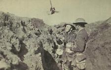 """British Army Soldiers Trench Carrier Pigeon World War 1 6x4"""" Reprint Photo gw"""