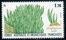 TIMBRE T.A.A.F. / TERRES AUSTRALES NEUF  N° 131 ** FLORE ET FAUNE ANTARTIQUE