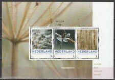 Nederland 2016 Postset 3012 Natuurkunst paardenbloem- gestempeld -  in envelop