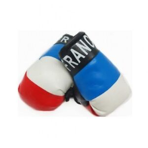 FRANCE MINIATURE BOXING GLOVES (PAIR) WORLD CUP 2018