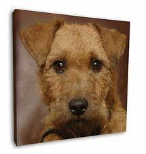 "Lakeland Terrier Dog 12""x12"" Wall Art Canvas Decor, Picture Print, AD-LT2-C12"