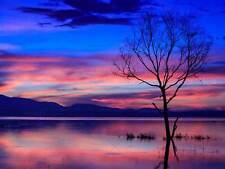 PHOTOGRAPH LANDSCAPE LAKE REFLECTING SUNRISE PINK CLOUD ART PRINT MP5682B
