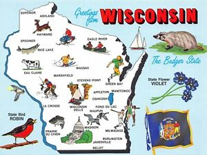 Greetings from Wisconsin State Badger Violet Robin Cities Vintage Postcard H14