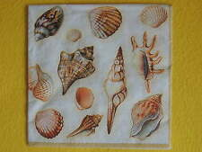 Muscheln 20 Servietten maritim shells viele 1/2 napkins 1 Packung Ambiente OVP