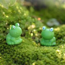 10Pcs Miniature Succulent Plants Pot Bonsai DIY Craft Blue Eye Frog Decor
