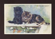 Animals CATS Black Persian Brown Tabby Kittens Artist M Gear PPC