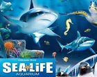2 X SEA LIFE Aquariums Tickets - Claim with 9 Sun Savers Codes