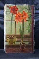 Colomba von Volborth - Amirillis - signiertes Gemälde - Öl auf Leinwand 1957 /H