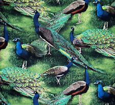 FAT QUARTER LICENSED SCENIC PEACOCKS BIRD ON GREEN GRASS COTTON FQ FABRIC