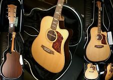 """COLE CLARK """"FAT LADY""""2  FL-2 AC -Spruce-Rosewood -Special Edition!!!"""