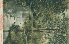 Somersby brook, carlton;