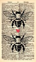 ORIGINAL Bumble Bees Dictionary Page - Honey Bee Art Print - Bee Artwork 175KSD
