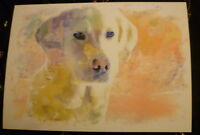 Labrador Dog Art Print A4 Matte Dog Art Bargain Price Surplus Stock
