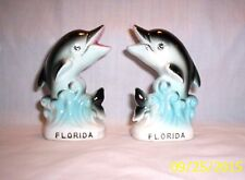 Shakers Z89 FPD Two Playfull Florida Dolphins
