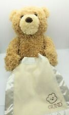 Gund Teddy Bear Plush Peek A Boo Animated Baby Shower Infant Gift Cute. Tested.
