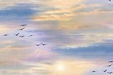 SUNSET GLIDING BIRDS CLOUDS SKY LANDSCAPE FABRIC