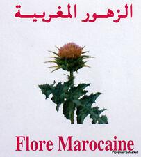 FLORE DU MAROC MOROCCO ENVELOPPE PREMIER JOUR FDC MA840