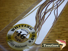 #16 BROWN WHITING 100's PACK DRY FLY SADDLE HACKLE FEATHERS WHITING FARMS NEW