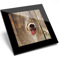 1 x Cute Funny Dog in the Hole Art Glass Coaster - Kitchen Student Gift #14153