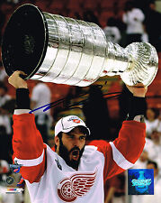 ANDREAS LILJA signed DETROIT RED WINGS 8X10 STANLEY CUP TROPHY photo w/ COA