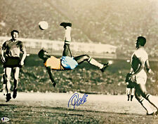 Pele Authentic Signed 16x20 Soccer Spotlight Photo Bicycle Kick PSA/DNA COA Blue