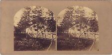 Paysage romantique Pont au bois Stéréo Vintage albumine ca 1860