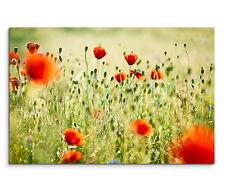 120x80cm Leinwandbild auf Keilrahmen Blumenwiese Mohnblumen