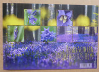 2017 BELGIUM FLOWERS 5 STAMP MINI SHEET MINT