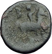 PHILIP V 220BC Macedonia RARE Genuine Ancient Greek Coin HERCULES & HORSE i62657