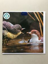RSPCA Blank Inside Greeting Cards Animals & Nature - Water Bird & Chick