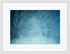 NATURE LANDSCAPE SNOW FROST COLD TREE BLACK FRAMED ART PRINT B12X4031