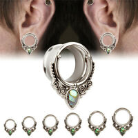 1PCS Stainless Steel Screw Shell Ear Gauges Flesh Tunnels Plugs Stretchers CYC