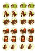 24 HEDGEHOG/ HEDGEHOGS  CUPCAKE TOPPER WAFER RICE EDIBLE FAIRY CAKE BUN TOPPERS