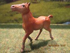 Ferme authentique rare poulain plomb Quiralu Authentic farm foal