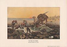 Wasserquelle Wüste Karawane Kamele FARBDRUCK von 1913