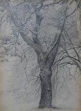 """James William Pattison """"Malkasten Garten, Dusseldorf"""" drawing 1873 (germany)"""