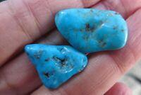 Sleeping Beauty Turquoise Crystal USA Specimen piece mineral Globe Arizona x2