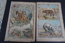 sept planches couleurs ancien abécédaire vers 1900 1920 animaux