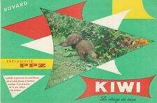 Buvard Vintage  Kiwi  le Cirage de Luxe  Fond Vert