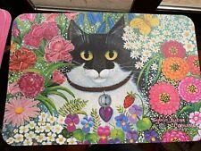 Plastic Cat Placemats Set of 4