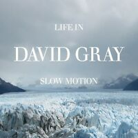 DAVID GRAY - LIFE IN SLOW MOTION  CD NEU