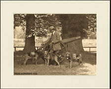 BLOODHOUND AND AIREDALE TERRIER RED CROSS WAR DOGS PRINT MOUNTED READY TO FRAME