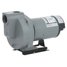 Do it Best 2-HP Dual Voltage Cast Iron Irrigation Sprinkler Pump