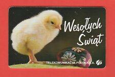 POLOGNE/POLAND/OISEAU BIRD POUSSIN CHICK