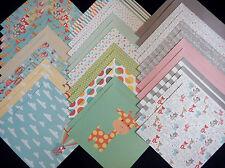 12x12 Scrapbook Paper Studio Cardstock Hooray Baby Animals Little Nursery Boy 40