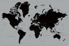 WORLD MAP-SILVER 24x36 POSTER OLDSCHOOL TEACHING SCHOOL GEOGRAPHY KIDS ADULTS!!